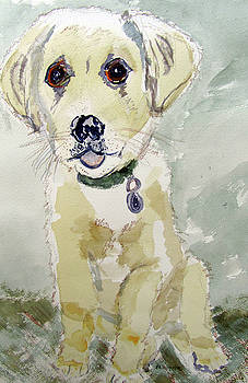 Puppy Charley by Barbara Pearston