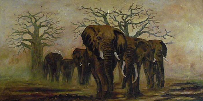 Survival by Amos Ochieno