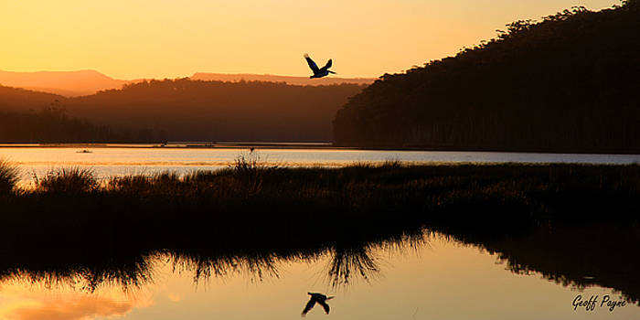 Take Flight Burrill Lake by Geoff Payne