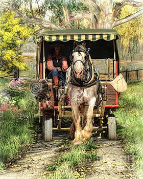 Take Me Home Country Road by Trudi Simmonds