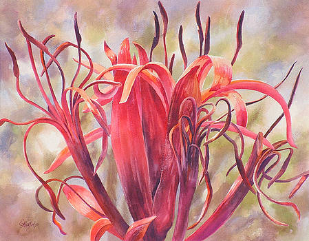 Tendrils Gymea Lily   by Ekaterina Mortensen