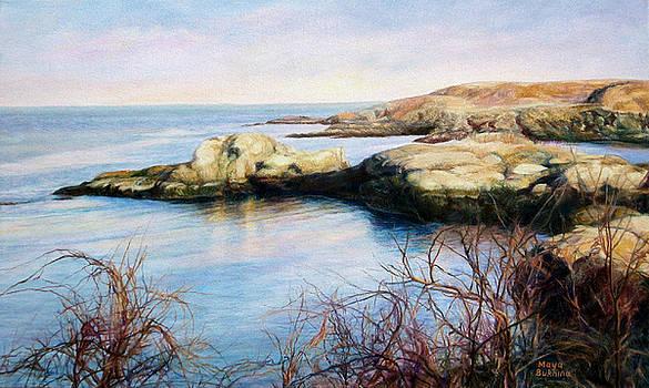 The rocky shore of the ocean by Maya Bukhina