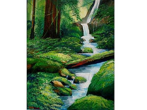 Tropical waterfall by Jean Pierre Bergoeing