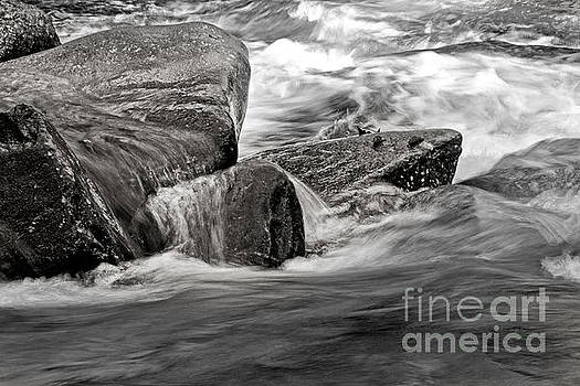 Water on the Rocks by Tom Gari Gallery-Three-Photography