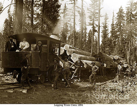 California Views Mr Pat Hathaway Archives - 0-4-2 logging train 1894