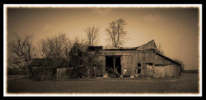 031709-41-a by Mike Davis