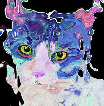 0361 Cat by Nixo by Nicholas Nixo