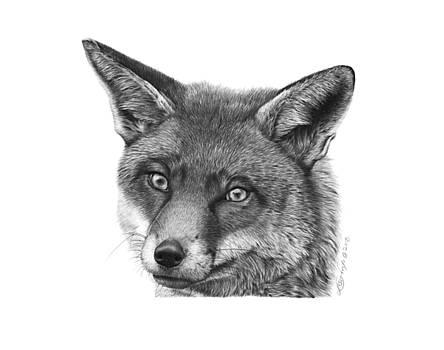 044 Vixie the Fox by Abbey Noelle