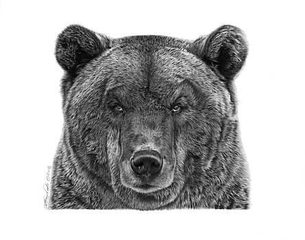 045 Papa Bear by Abbey Noelle
