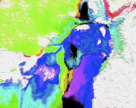 0509 Horse by Nixo by Nicholas Nixo