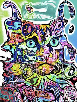 0654 Cat by Nixo by Nicholas Nixo