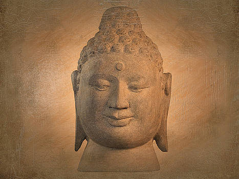 antique oil effect Buddha Borobudur by Terrell Kaucher