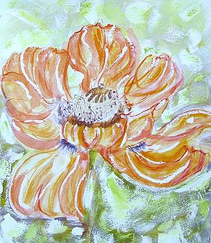 One Poppy by Barbara Pearston