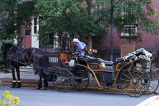 Laurie Perry - Savannah Carraige Ride