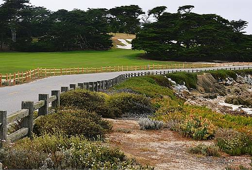 17-Mile Drive by Marian Jenkins