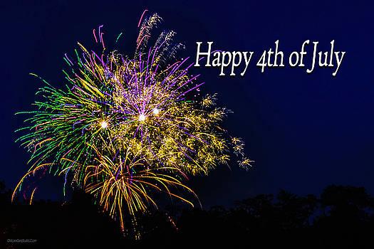 LeeAnn McLaneGoetz McLaneGoetzStudioLLCcom - 4th of July Fireworks