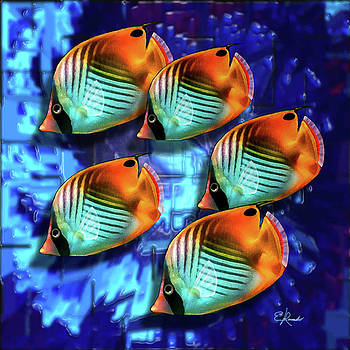 5 Butterfly Fishes by Edwin Rosado