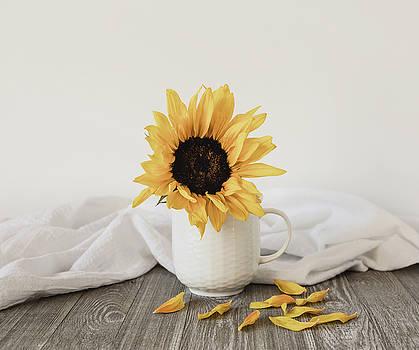 Kim Hojnacki - Sunshine in a Cup