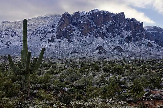 Saija  Lehtonen - A Desert Winter Wonderland