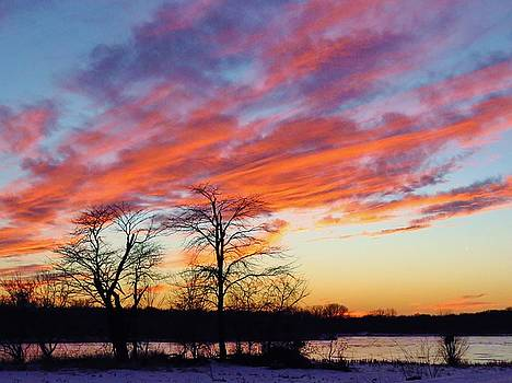Glorious Skies by Lori Frisch