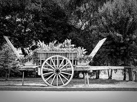 A Little Flower Wagon - Normandy, France by Joseph Hendrix