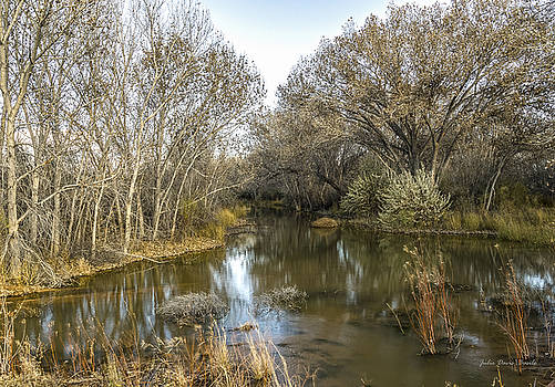 A Reflection of the Bosque by Julie Basile