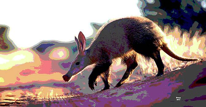 Aardvark by Charles Shoup