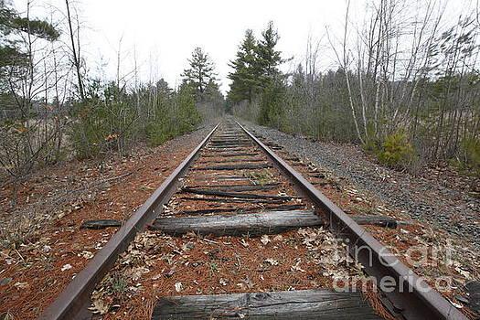Jonathan Welch - Abandoned Railroad Tracks
