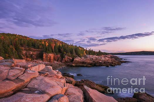 Acadia Sunrise by Sharon Seaward