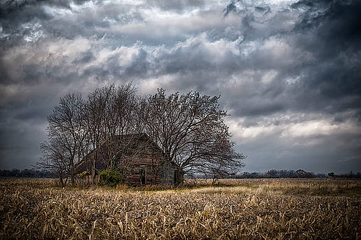 After Harvest by Garett Gabriel