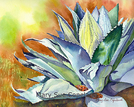 Agave by Mary Sue Copeland