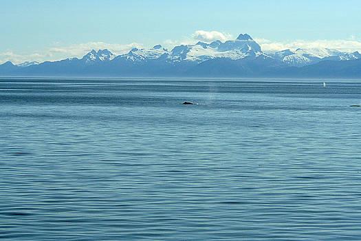 Alaska by Hazel Rice