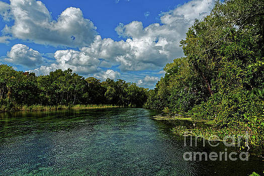 Paul Mashburn - Alexander Creek