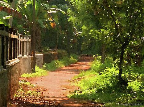 Along the Pathway by J Morgan Massey