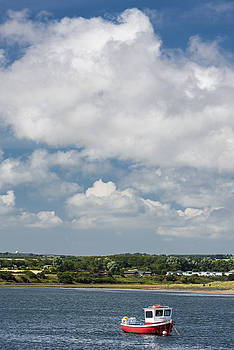 David Taylor - Amble Harbour