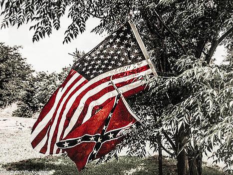 American Pride  by Kim Loftis