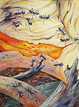 Ants Landscape by Ekaterina Mortensen