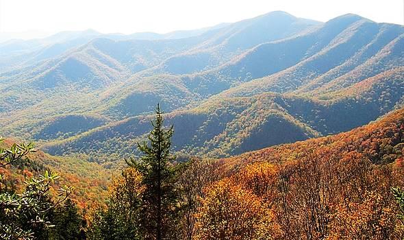 Appalachian Autumn by Joshua Bales