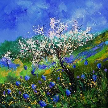 Appletree In Blossom by Pol Ledent