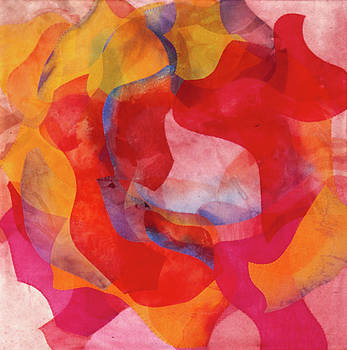 Arizona Rose by Margaret Anderson