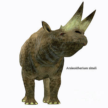 Arsinoitherium Mammal on White by Corey Ford