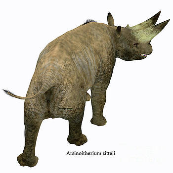Arsinoitherium Mammal Tail by Corey Ford
