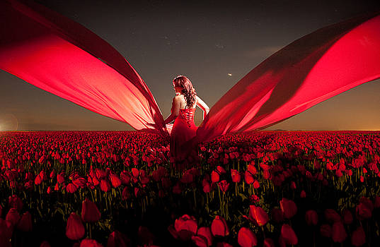 Assembling the Tulips by Dario Infini