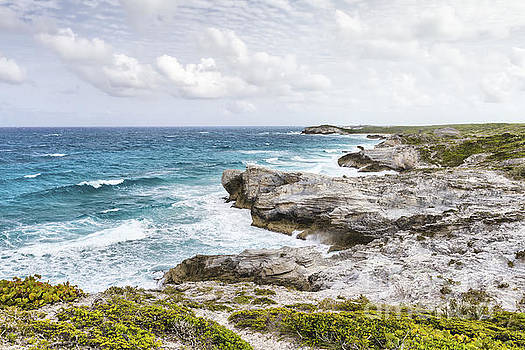 Atlantic coastline in Bahamas by Pier Giorgio Mariani