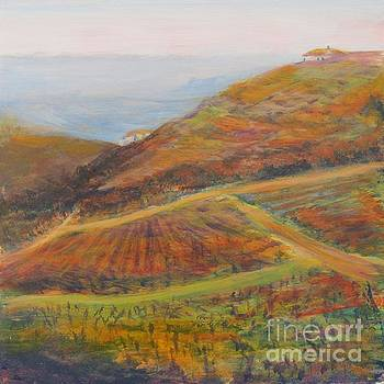Atmospheric View of the Valley by Vivian Haberfeld