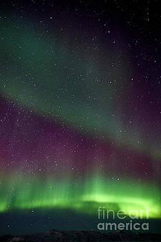Aurora Borealis In Iceland by Benjamin Wiedmann