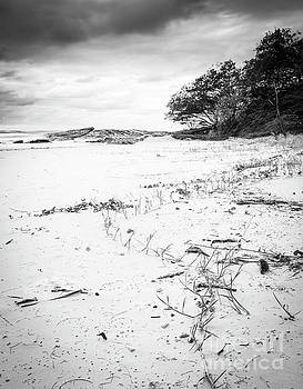 Tim Hester - Australia Beach Sunrise Black and White