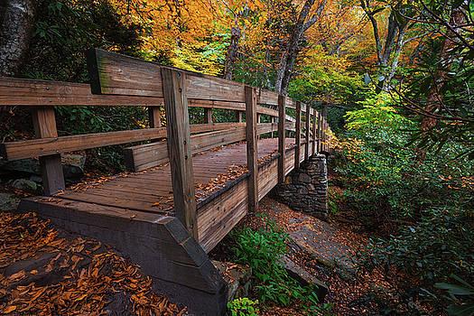 Autumn Bridge by Reid Northrup