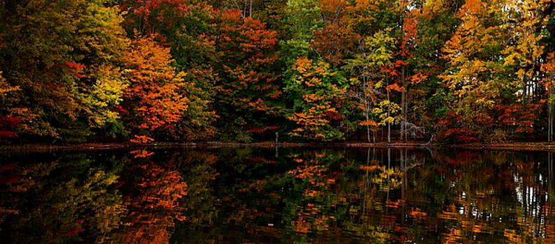 Autumn Colors 22 by Scott Fracasso