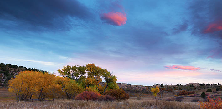 Autumn Days by Tim Reaves